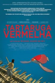 Photo of A Tartaruga Vermelha   Sinopse – Trailer – Elenco