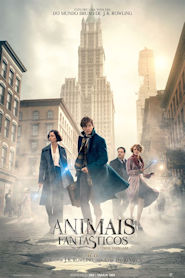 Photo of Animais Fantásticos e Onde Habitam | Sinopse – Trailer – Elenco