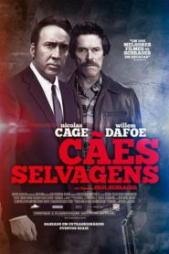Photo of Cães Selvagens | Sinopse – Trailer – Elenco