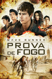Photo of Maze Runner – Prova de Fogo | Sinopse – Trailer – Elenco