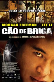Photo of Cão de Briga | Filme
