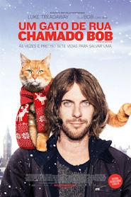 Photo of Um Gato de Rua Chamado Bob | Sinopse – Trailer – Elenco