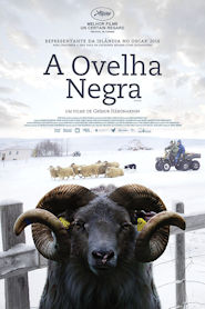 Photo of A Ovelha Negra | Filme