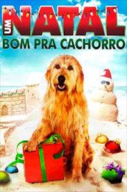 Photo of Um Natal Bom Pra Cachorro | Sinopse – Trailer – Elenco